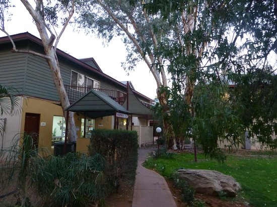Alice On Todd Apartments: White gums in grounds