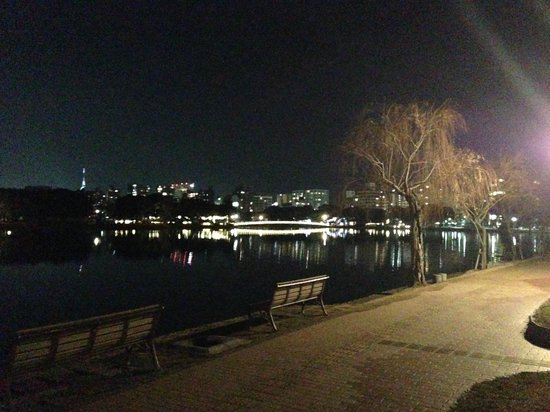 Ohori Park: 大濠公園(夜)