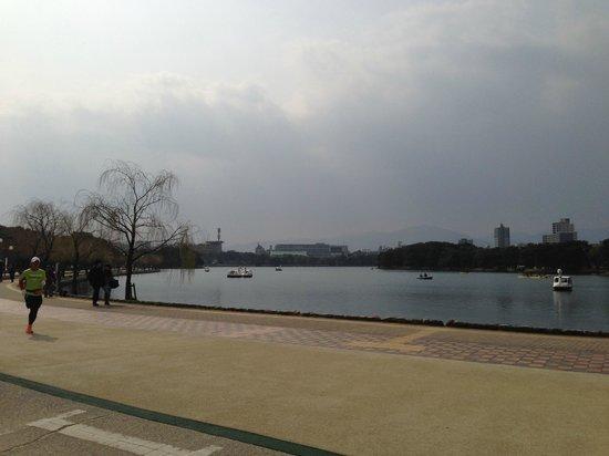Ohori Park: 大濠公園(昼)