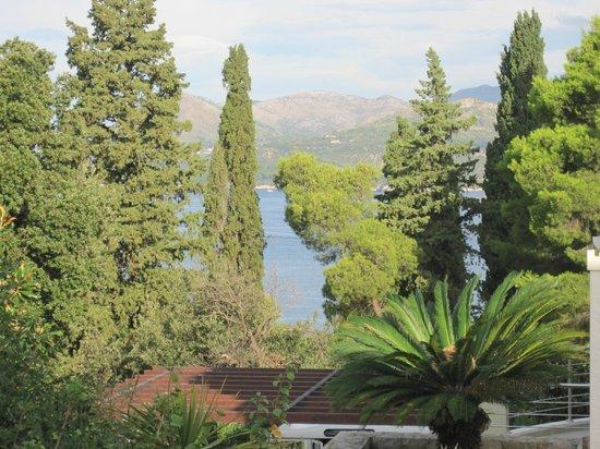 Villa Borna: Вид с балкона номера.