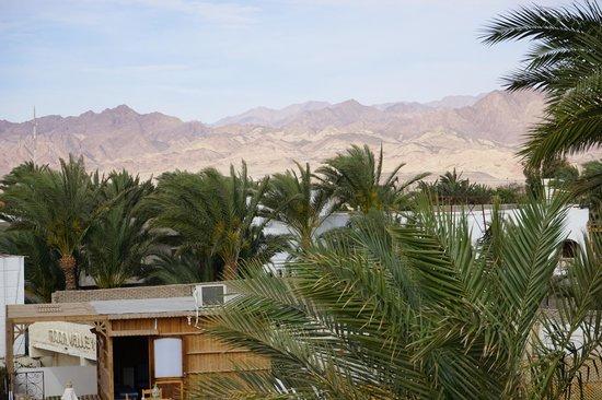 Hotel Planet Oasis : uitzicht vanop het dak van het hotel
