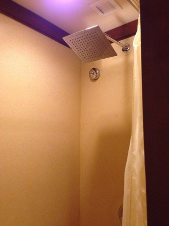 Hotel Novotel Bogor Golf Resort and Convention Center : Bathroom