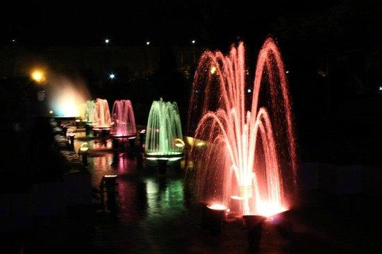 Tungabhadra Gardens and Dam: musical fountain