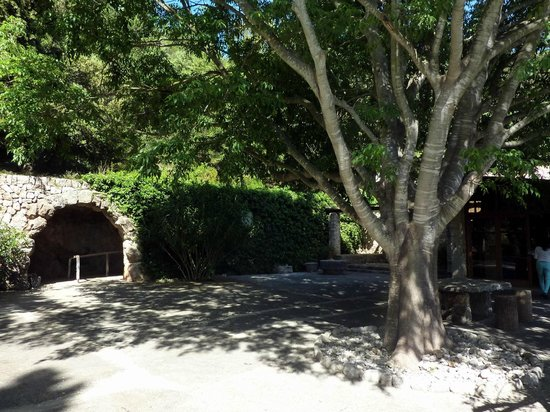 Coves de Campanet: Terrasse devant l'entrée de la grotte