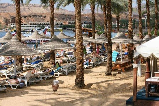 Dessole Seti Sharm Resort: пляж