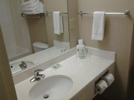 Country Inn & Suites by Radisson, Orlando, FL: baño basico