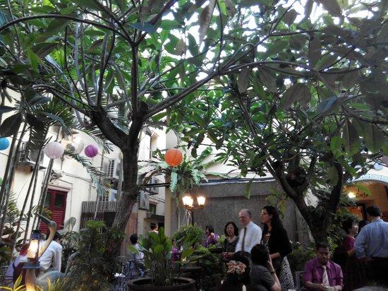 Hotel Puri: The garden