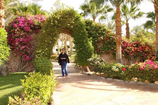 Nuweiba Coral Resort: wunderschöne Gartenanlage