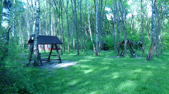 Medvezhyi Ozera Country Club: Территория