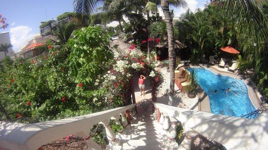 Aventura Mexicana: jardines