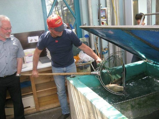 Riebels: Stefan Riebel zeigt einen Fisch