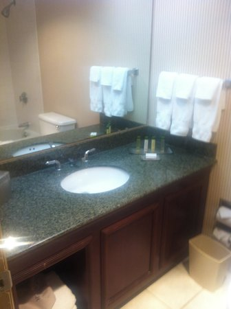 DoubleTree by Hilton Hotel Newark Airport : The bathroom