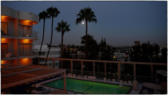 The Standard, Hollywood : the pool