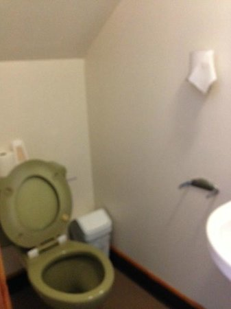 Dark Island Hotel: Toilet (accessed via sliding door just about on its hinges)