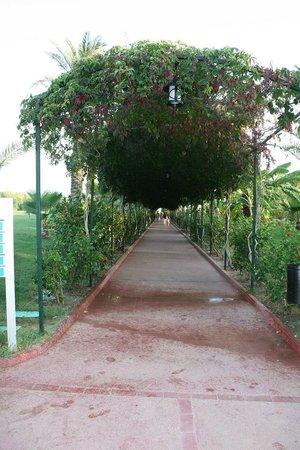 SENTIDO Turan Prince: Тенистая дорога к пляжу
