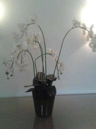 BEST WESTERN Hostellerie Du Vallon : conposition d'orchidées a L'hôtel