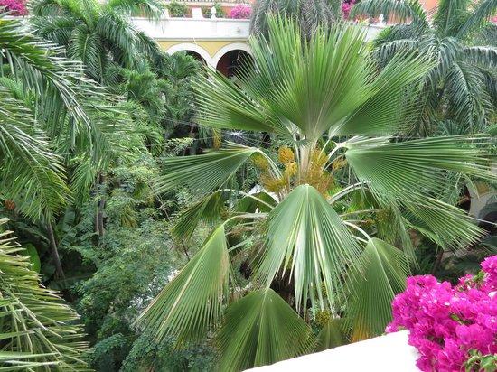 Sofitel Legend Santa Clara : view of the courtyard vegetation from upper floor