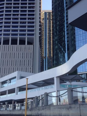 CityCat Ferry : Brisbane skyline