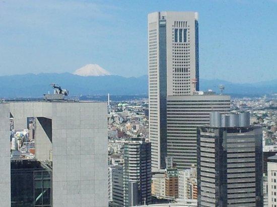 Hotel Century Southern Tower: vista dalla camera