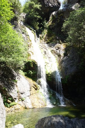 Salmon Creek Falls Trail