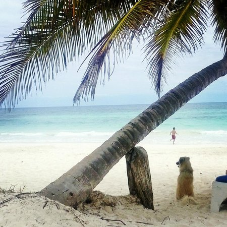 Playa Xcanan Cabanas Tulum: The beach out front