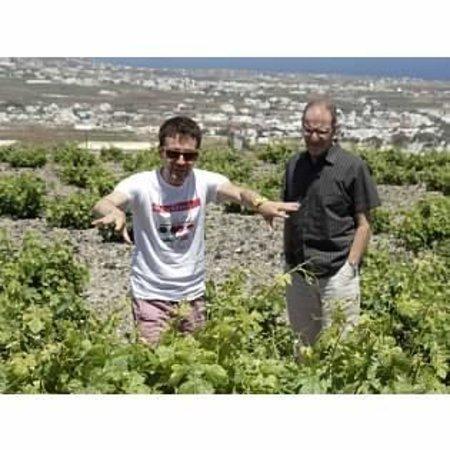 Santorini Wine Tour: Gavalas Winery w George