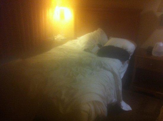 Best Western Premier Grand Canyon Squire Inn : Als DZ deklariert...