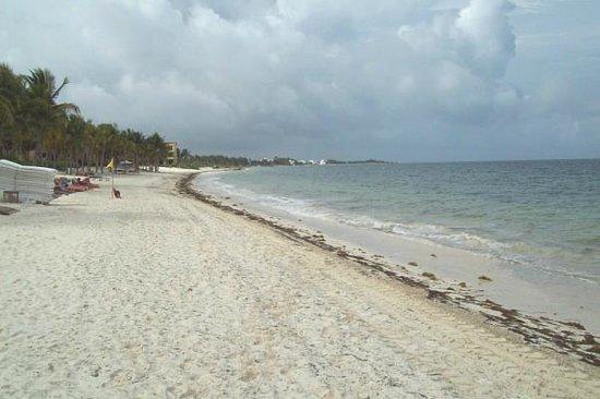 Zoetry Paraiso de La Bonita: Hotel's beach