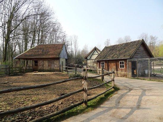 GaiaZOO : The Dutch part of the zoo