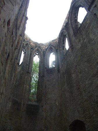 Burg- und Klosterruine Oybin: Monastery