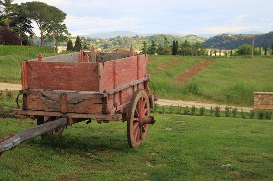 Bosco ai Marzi: vista dall'agriturismo