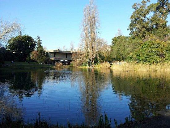 Museo Calouste Gulbenkian: Gulbenkian Foundation gardens