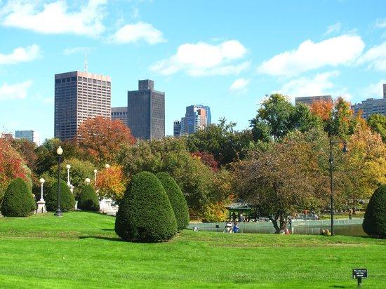 Boston Public Garden Photo By Ronald G Shapiro Phd