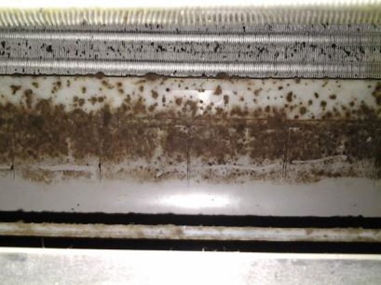 Castaways Resort & Spa Mission Beach : inside our air con that had foul smell
