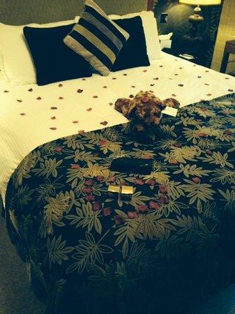 Cranleigh Boutique : Room 12 - Sheer Romance