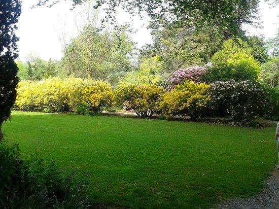 Altamont Gardens: garden