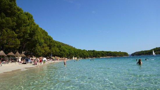 Formentor Playa: playa formentor