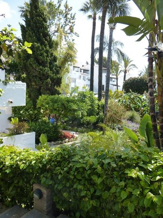 Puente Romano Beach Resort & Spa Marbella: Walk in the shade of beautiful mature trees
