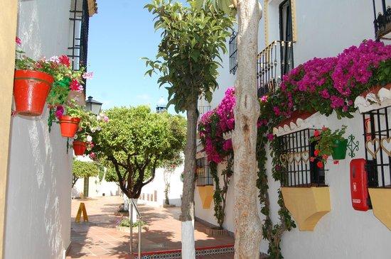 Globales Pueblo Andaluz: Grounds