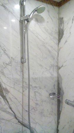 Best Western Hotel Leipzig City Center: Shower