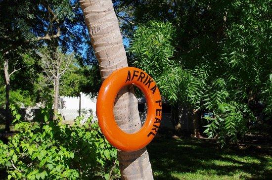 Afrika Pearl & Spa: Pool