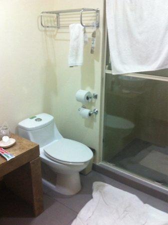 Best Western Plus Piedras Negras : Baño en el cuarto