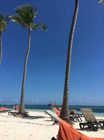 Barcelo Bavaro Beach - Adults Only: reposera