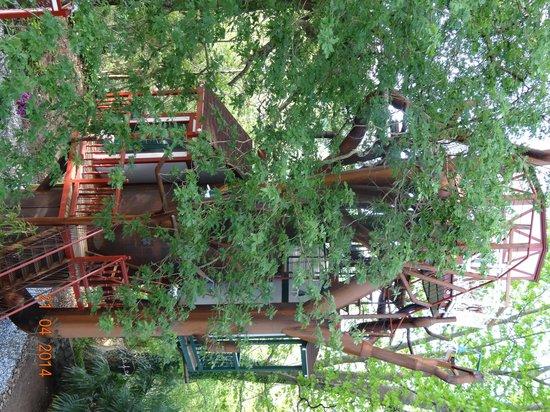 Maison d'hôtes Rosa Enia : le nid2