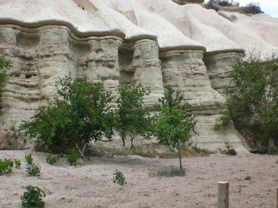 Cappadocian Cuisine: Pidgeon valley walk