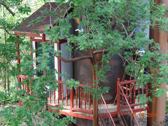 Maison d'hôtes Rosa Enia : le nid 1