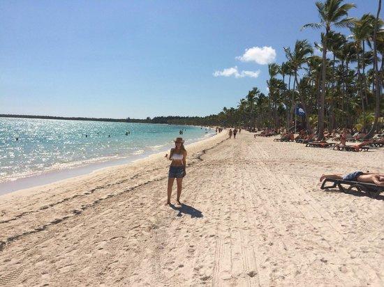 Barcelo Bavaro Beach - Adults Only: beach bavaro
