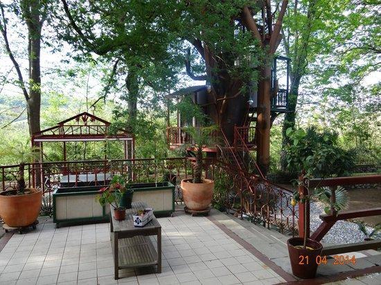 Maison d'hôtes Rosa Enia : le jardin
