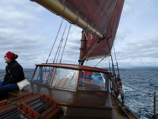 3-Hour Sail: Under sail
