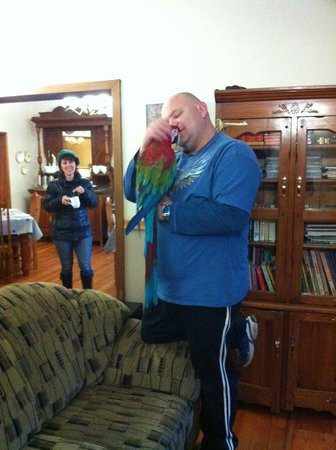 Sunrock Guesthouse: Chris and his parrot!  Charming, the two of them.